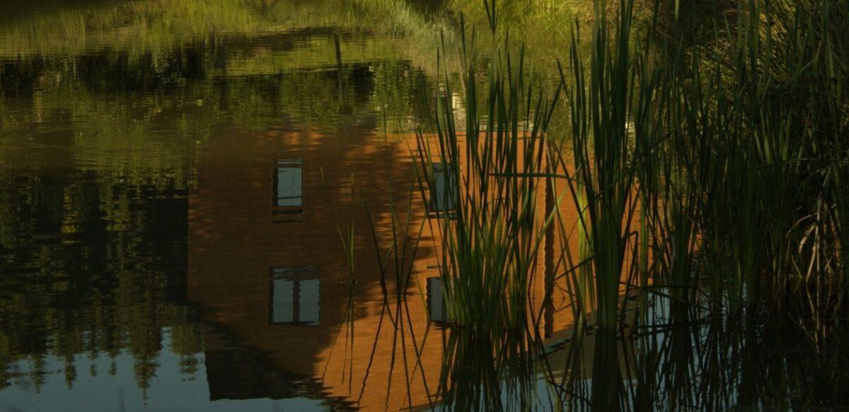 pohled od rybníka_resize