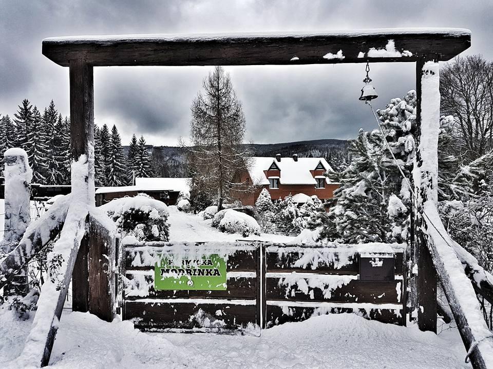 brána zima 2017